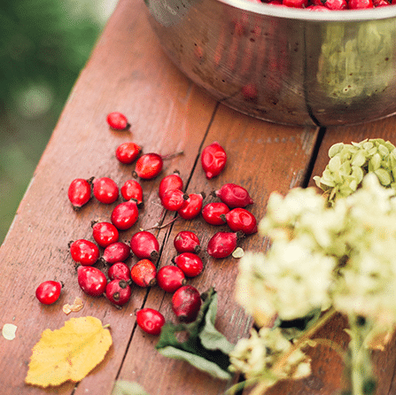 rose hips on a picnic table next to flowers and a bowl of rosehips