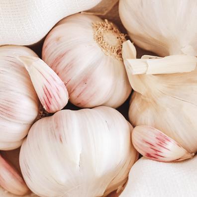 garlic bulks in a white dish towel