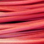 very vibrant pink, sunset like, rhubarb