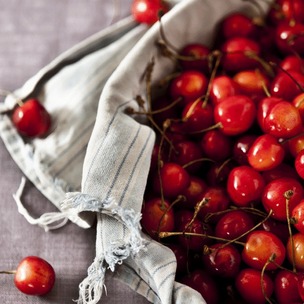 basket covered in a tattered dish towel full of fresh cherries