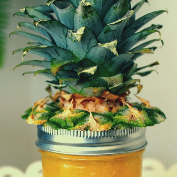 "pineapple ""hair"" on top of a jar of pineapple jam"